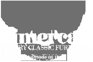 Mobili classici di lusso Vimercati Meda